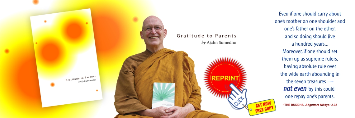 Reprint Gratitute to Parents
